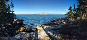 Ocean view. Acadia montians copy