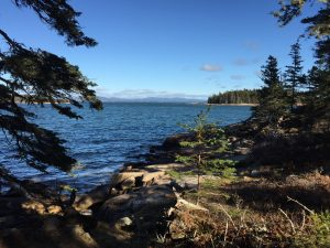 Southern view